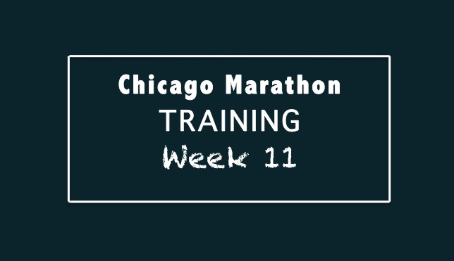 chicago_week11